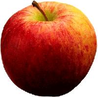 Gratis äpplen